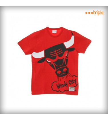 BIG FACE BULLS T-SHIRT
